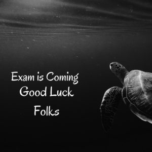 good_luck_exam_dp